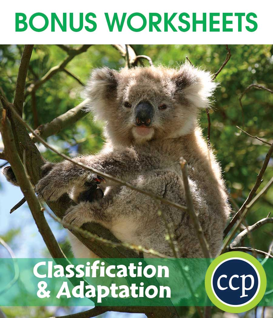 Classification & Adaptation Gr. 5-8 - BONUS WORKSHEETS - eBook