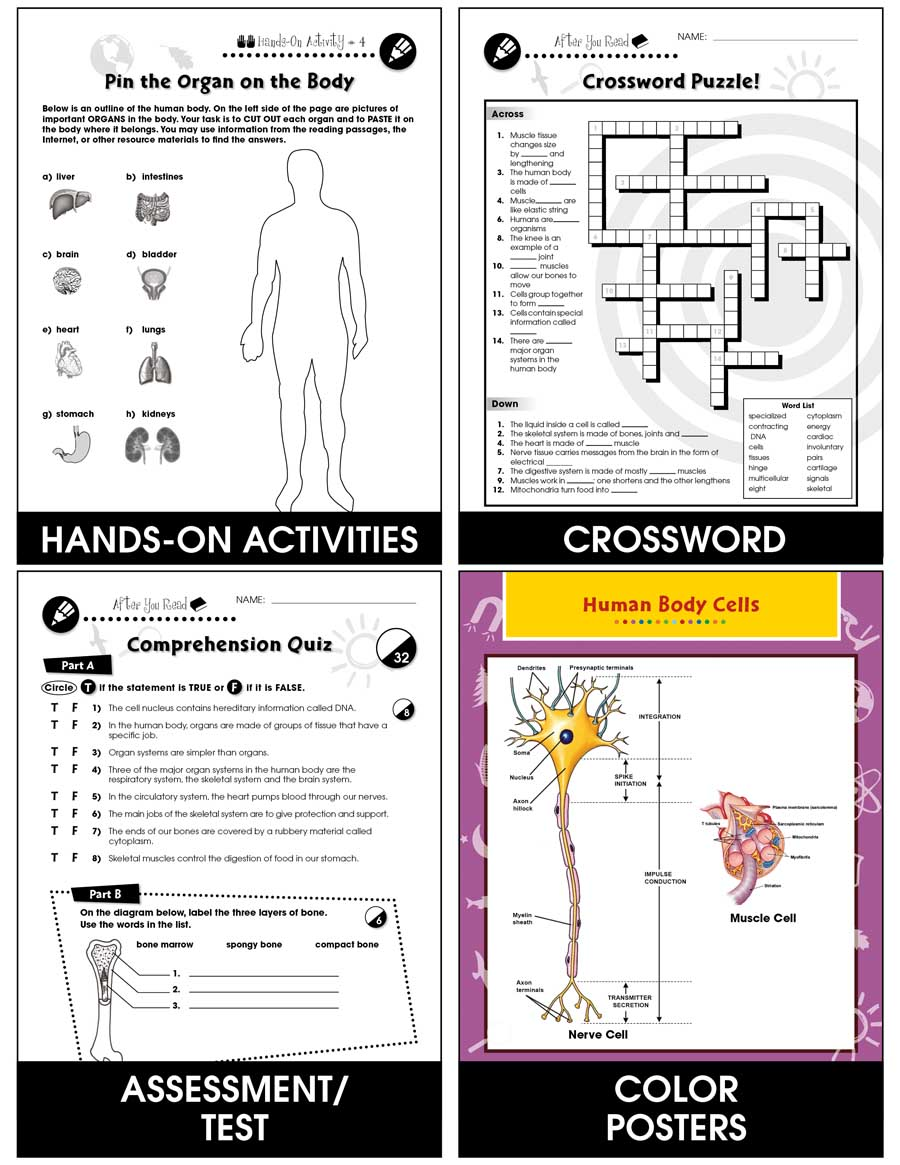 Cells, Skeletal & Muscular Systems Gr. 5-8 - print book