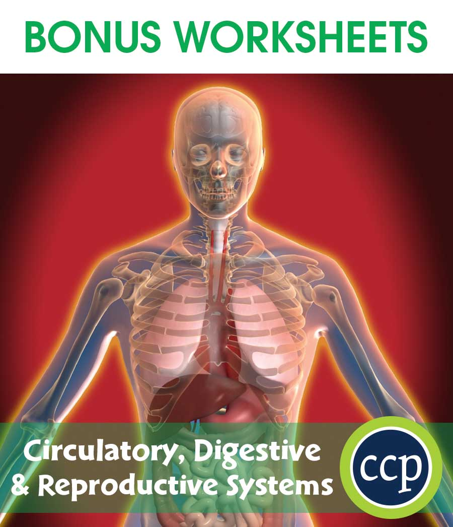 Circulatory, Digestive & Reproductive Systems Gr. 5-8 - BONUS WORKSHEETS - eBook