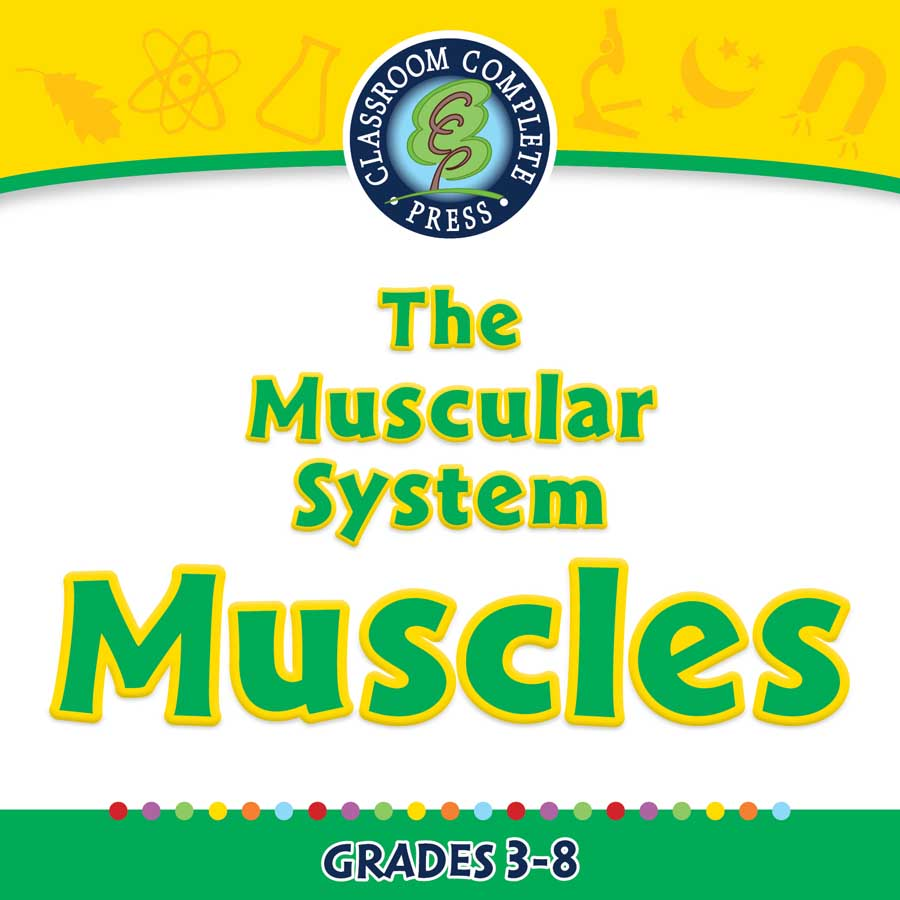 The Muscular System Muscles Cells Skeletal Muscular Systems