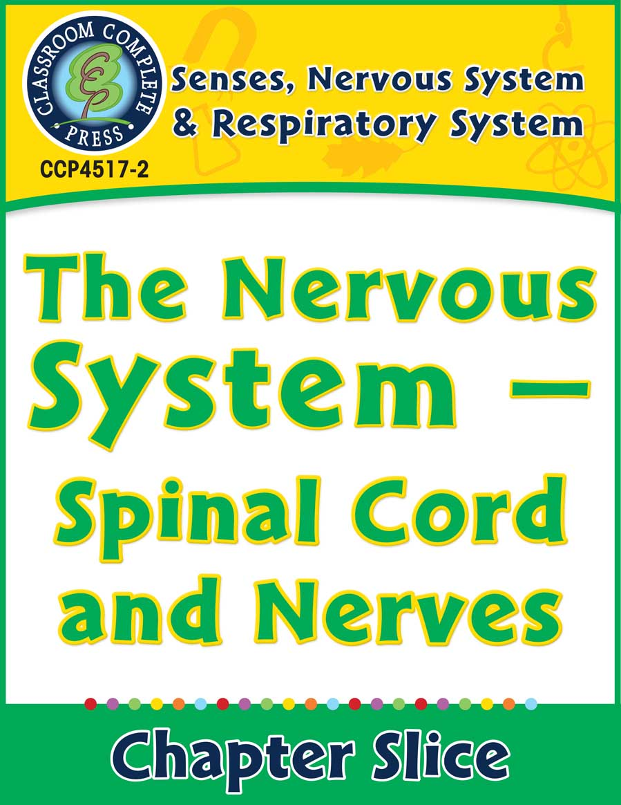 Senses, Nervous & Respiratory Systems: Spinal Cord and Nerves Gr. 5-8 - Chapter Slice eBook