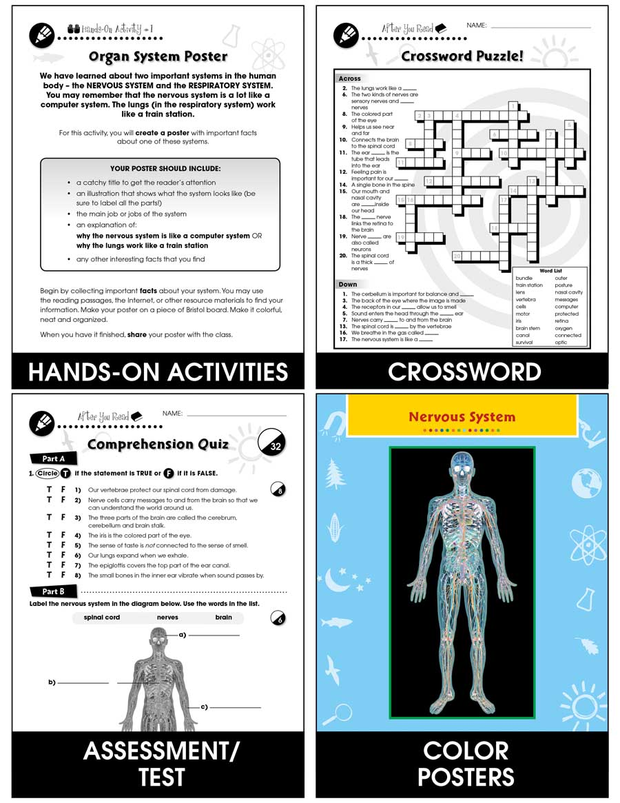 Senses, Nervous & Respiratory Systems: The Sense of Touch Gr. 5-8 - Chapter Slice eBook