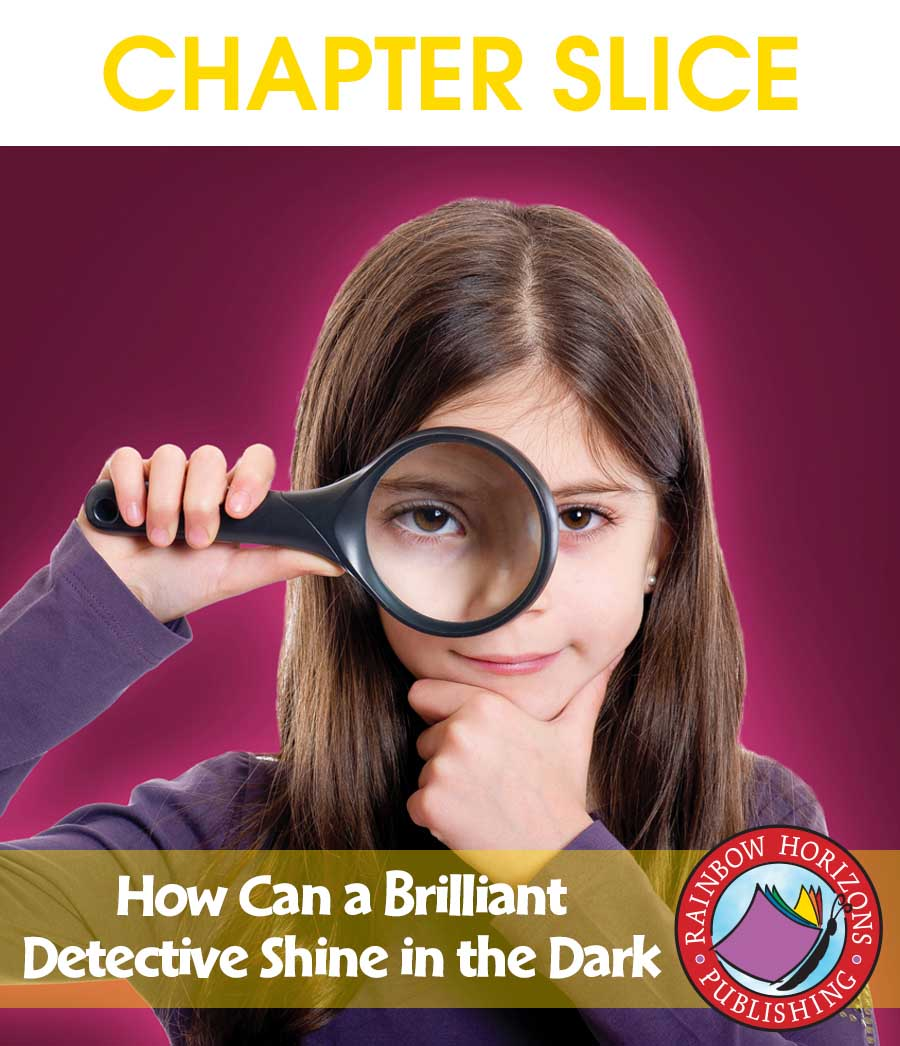 How Can a Brilliant Detective Shine in the Dark? (Novel Study) Gr. 4-7 - CHAPTER SLICE - eBook