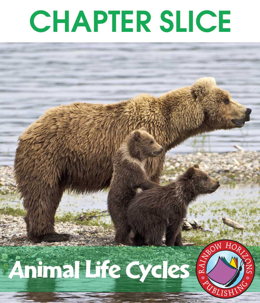 Animal Life Cycles Gr. 2-3 - CHAPTER SLICE - eBook