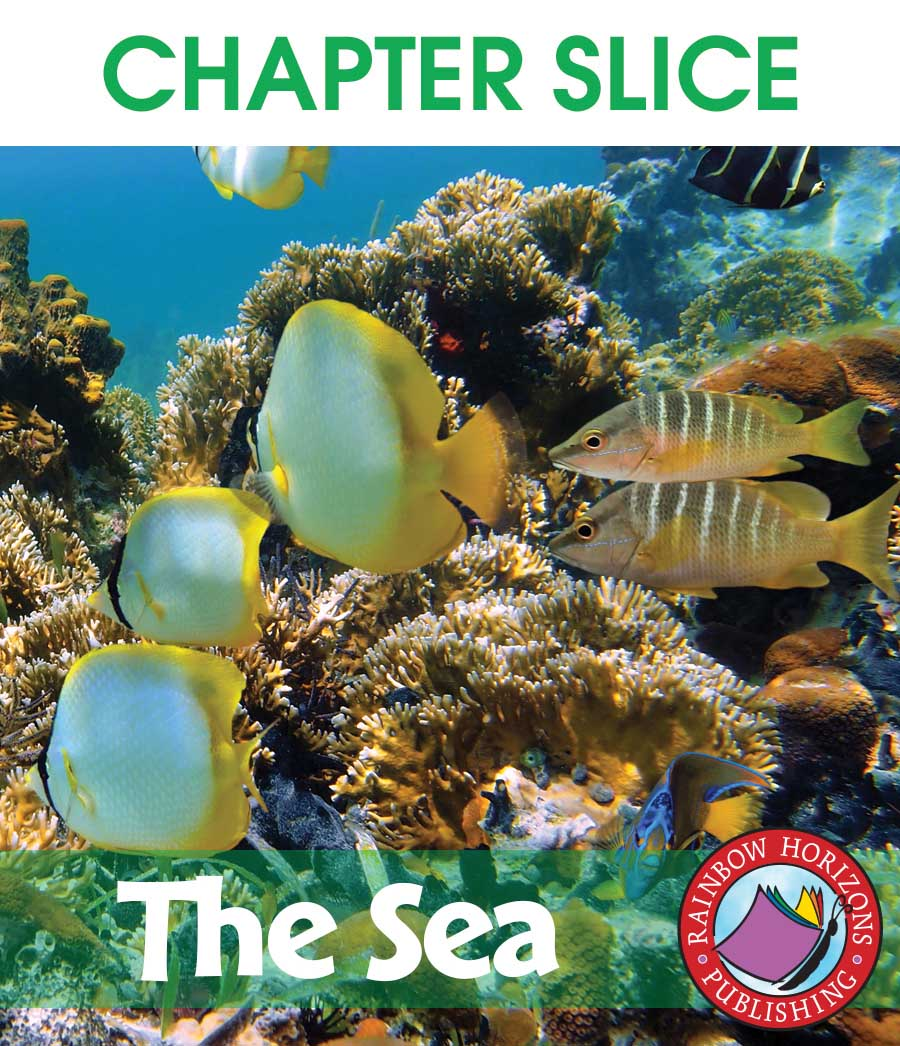 The Sea Gr. K-1 - CHAPTER SLICE - eBook
