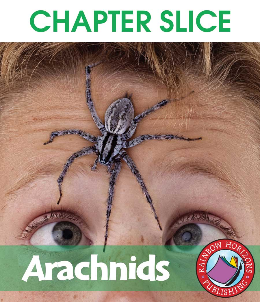 Arachnids Gr. 1-2 - CHAPTER SLICE - eBook