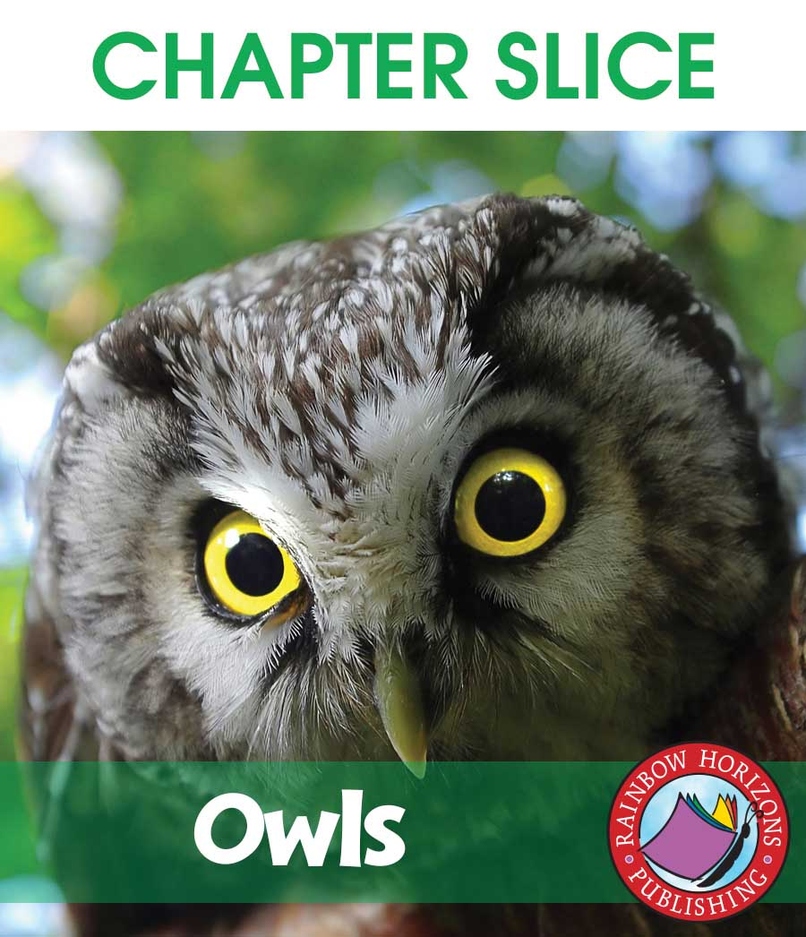 Owls Gr. 2-6 - CHAPTER SLICE - eBook