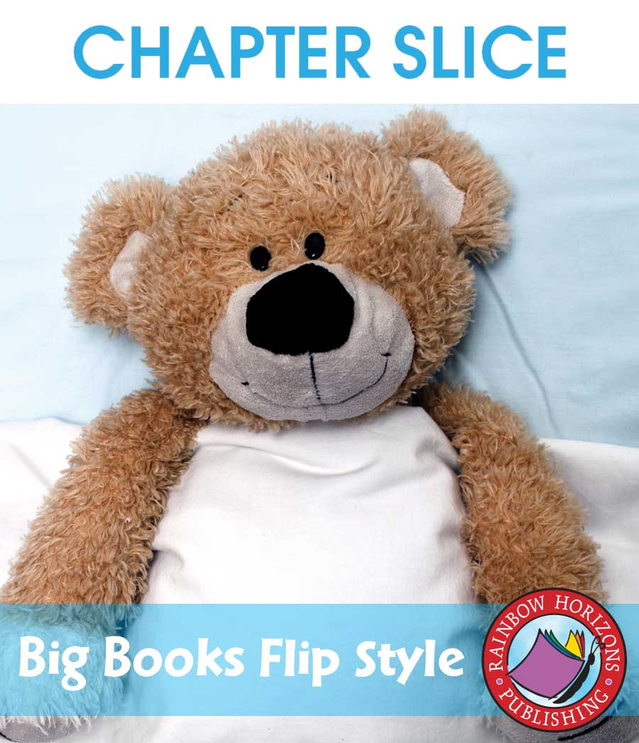 Big Books: Flip Style Gr. K-1 - CHAPTER SLICE - eBook